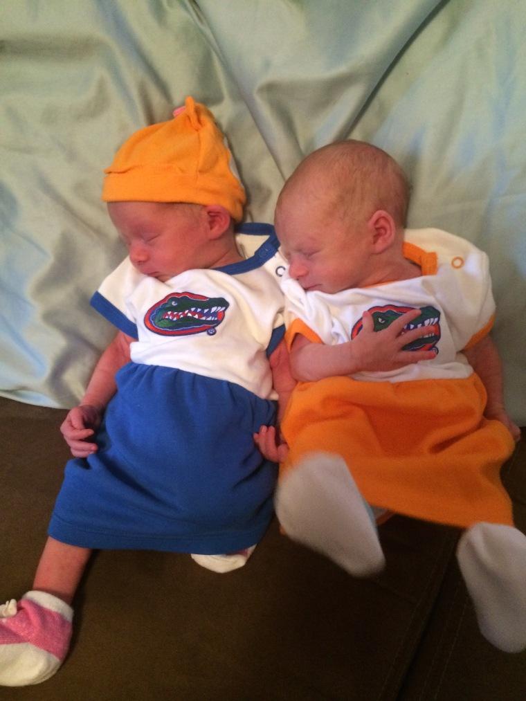 baby-gators